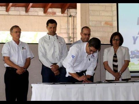 Gobierno y centros académicos lanzan Programa Nacional de Extensión Agrícola y Ganadera