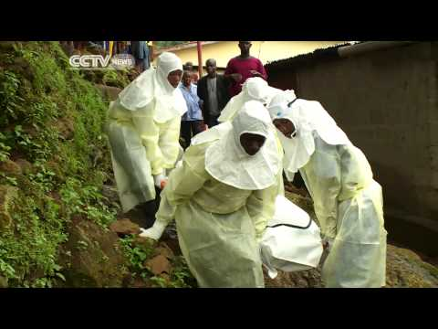 Sierra Leone Midwives Return To Health Facilities After Fleeing For Fear Of Ebola