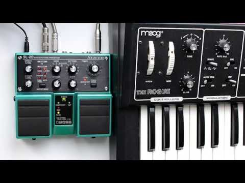 Boss SL-20 slicer with Moog the Rogue