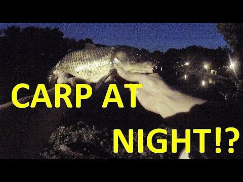 NIGHTTIME CARP!!?? How To CATCH CARP At NIGHT!!