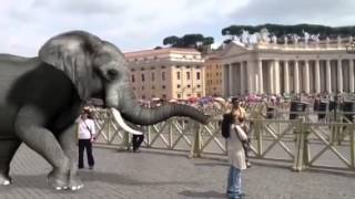 Elephant brought to Vatican City for Entertainment