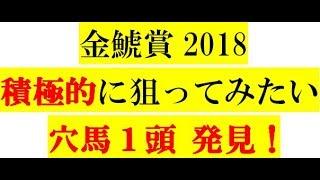 金鯱賞2018【穴馬】1頭 発見!徹底分析!