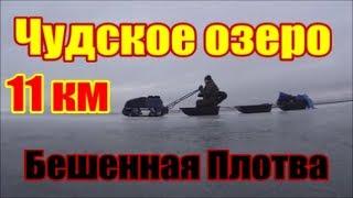 Чудське Peipsi Lake 2019 д. Спицино 11 км в море !Шалений клювання плотви такого я не очікував (1 серія)