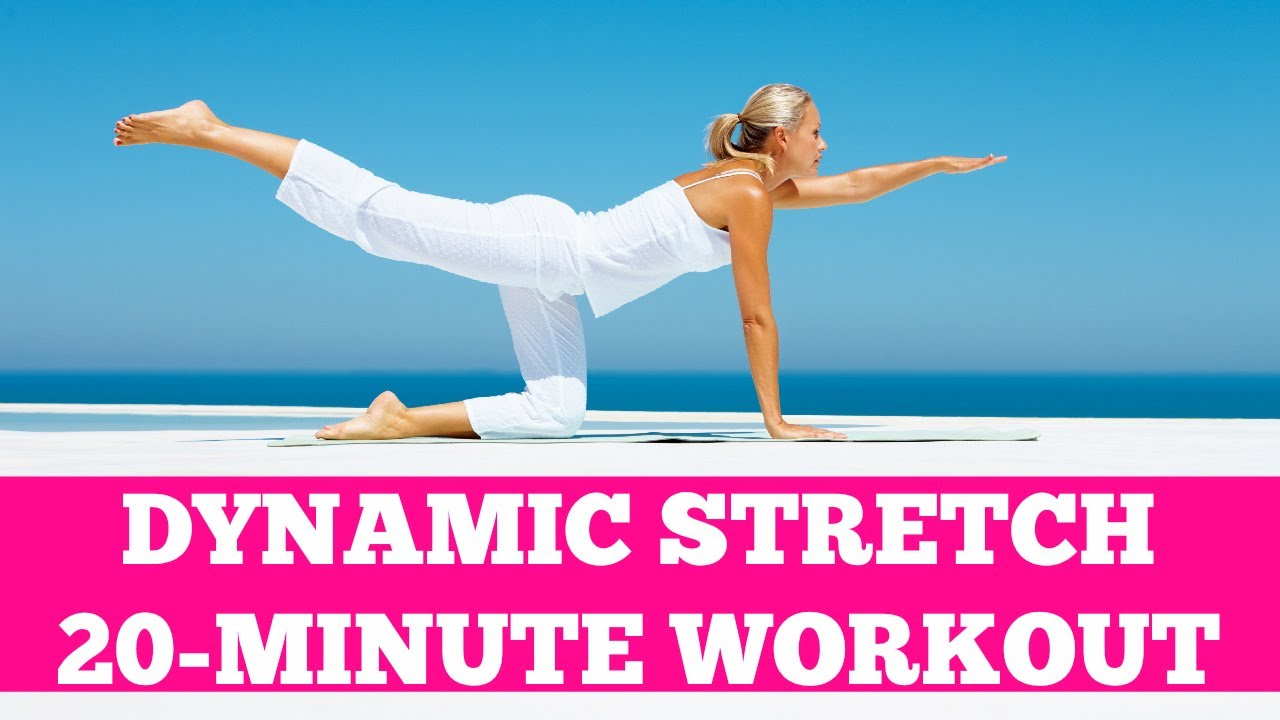 20-Minute Dynamic Stretch: Light Cardio Warm Up or Cool Down Active  Stretching Routine
