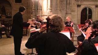 Antonín Dvorak. Serenata para cuerdas en Mi Mayor, Op. 22. Tempo di Valse. OCCM.