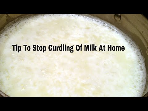 Tip To Stop Curdling Of Milk At Home || How To Avoid MilkCurdling || LaxmiYouTube