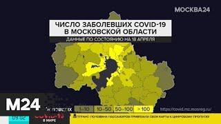 В Подмосковье провели почти 100 тысяч исследований на коронавирус - Москва 24