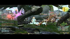 【FF14】断頭のロゾル トトロック (Lozol Totoloq the Decapitator) + Tactic
