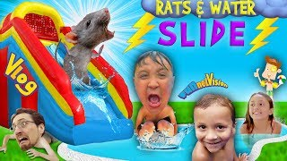 RATS & Thunderstorm! INFLATABLE SLIDE Fun! FUNnel Vision Summer Vlog