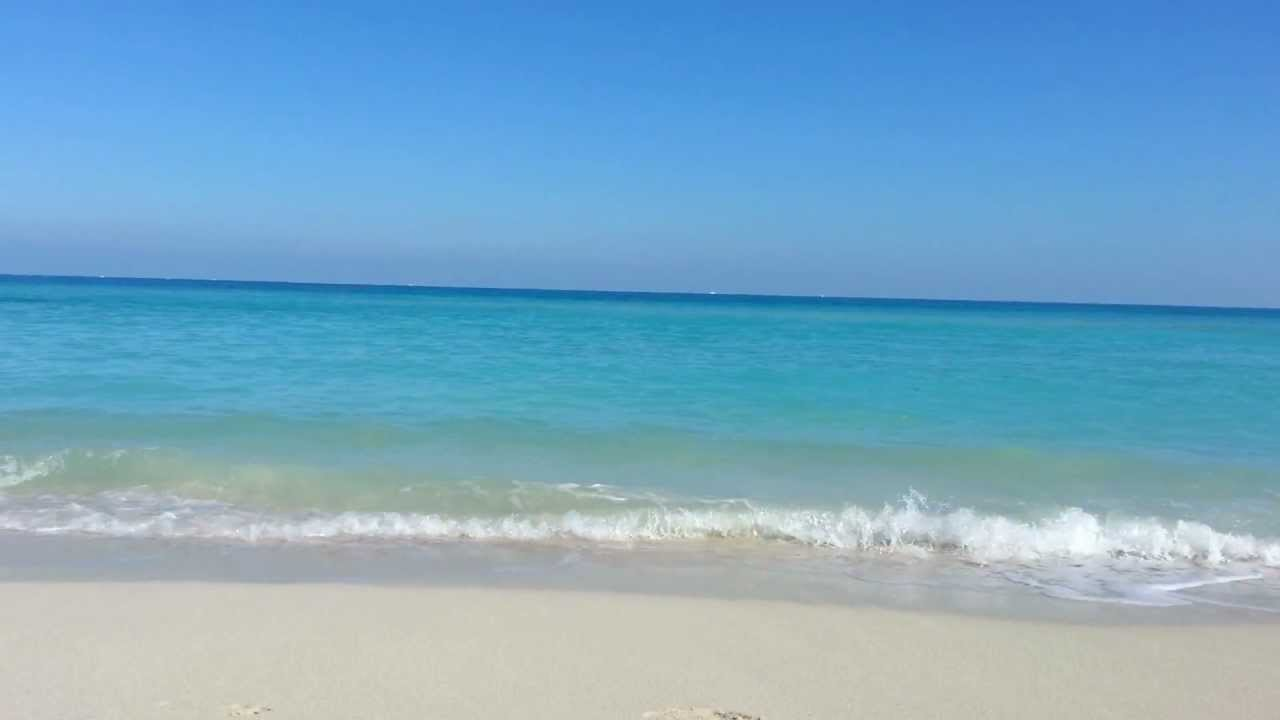 miami beach screensaver - youtube