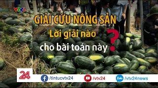 """Nông sản Việt còn phải """"giải cứu"""" đến bao giờ?  - Tin Tức VTV24"""