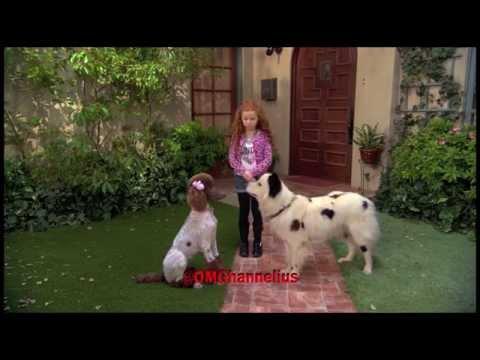 Stan Falls In Love  Dog With A Blog    Season 3 Episode 4 sneak peek   G Hannelius HD