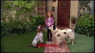 Video Stan Falls In Love - Dog With A Blog - Promo - Season 3 Episode 4 sneak peek clip - G Hannelius HD download MP3, 3GP, MP4, WEBM, AVI, FLV Juni 2018