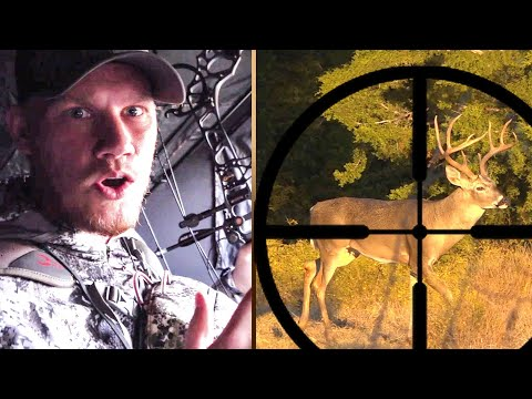 The Hunt For A MONSTER 9 Point Texas Whitetail!