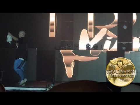 Bad Bunny Ft Cosculluela Y Daddy Yankee Tu No Metes Cabra En Vivo Puerto Rico