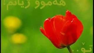 moin asfahany