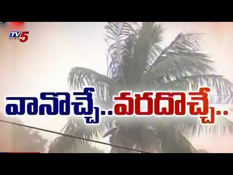 Heavy rains for Two States | Happy farmers : TV5 News