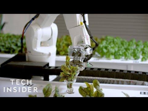 How This Robotic Farm Is Reimagining Agriculture