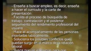 Video Curso Tecnico en Orientacion e Insercion Laboral