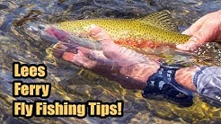 Tips For Fly Fishing The Lees Ferry AZ Walk In Area | Part1