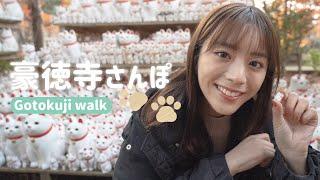 【Vlog】豪徳寺で猫探しさんぽ