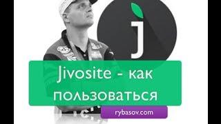 JIVOSITE как пользоваться лайф чатом