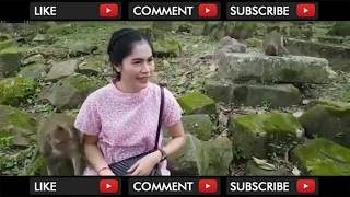 Video MONYET MESUM RAYU PEMBANTU CANTIK HINGGA DI GITUIN download MP3, 3GP, MP4, WEBM, AVI, FLV September 2018