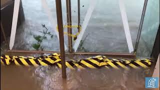 直擊香港颱風:海水倒灌杏花邨 商場變泳池