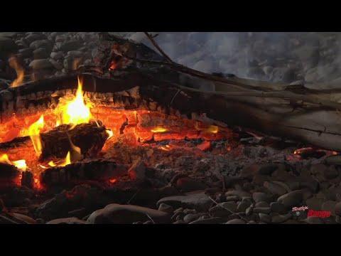 Rhino Rissoles - Roothy Bush Cooking