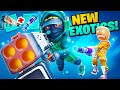 Gambar cover BEST *NEW* EXOTICS! update