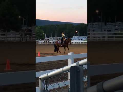 Centre Hall, Pennsylvania 2017 Youth Horsemanship