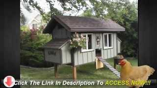 Build Your Own Top Quality Chicken Coop With These Simple Steps