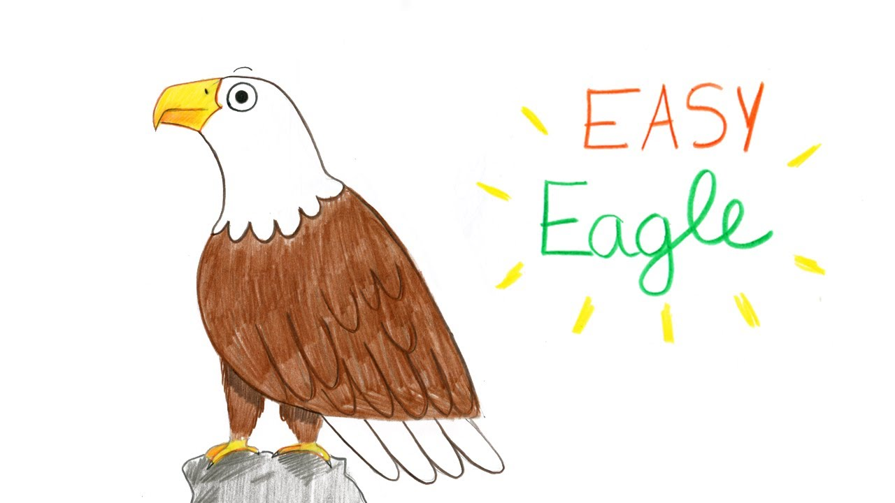 How to draw a bald eagle easy way comment dessiner facilement un aigle