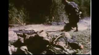 Combat Medics in Vietnam