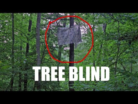 Climbing Tree Stand Blinds Hunting Blind Supply