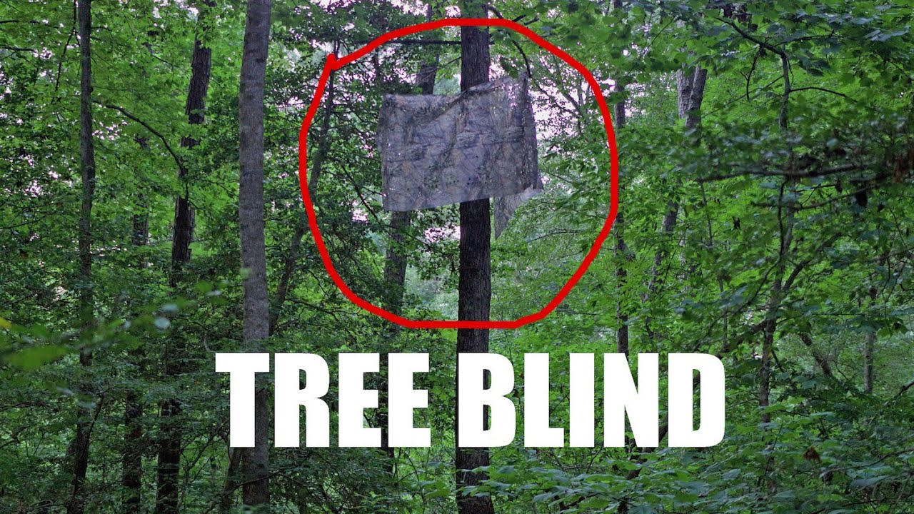 build plans how deer sizes to tree free in blinds stand of variety a blind