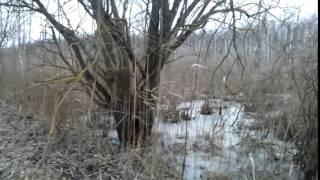 Охота на Лося Контрольный выстрел   YouTube