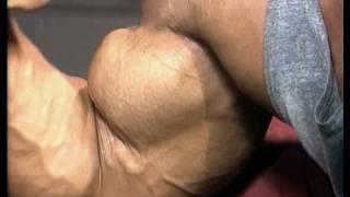 Download lagu Bodybuilding DVD Guns XXL featuring super heavyweight bodybuilders MP3