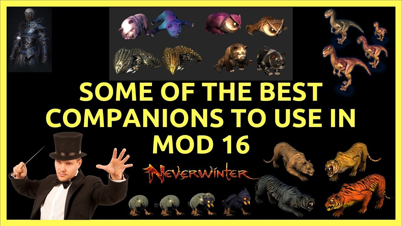 Some Of The Better & Best Companions To Use In Neverwinter Mod 16