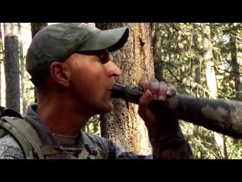 Corey Jacobsen's Elk Calling Basics