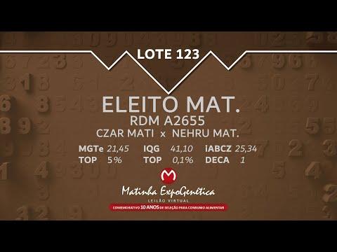 LOTE 123 MATINHA EXPOGENÉTICA 2021