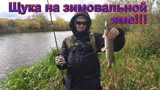 Ловля осенью Щука окунь в сентябре Ловля щуки на джиг Рыбалка на реке со спиннингом Perfect jig