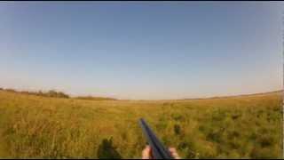 Gopro upland game bird hunting