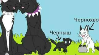 Коты воители дети бича