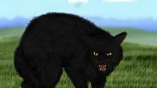 Коты воители. Звёздные имена котов. Племя Ветра