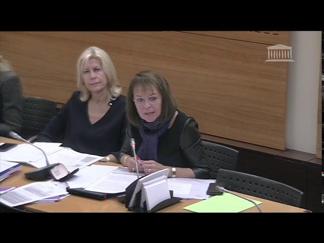 Intervention relative aux crédits culture du PLF 2020 lors de l'audition du ministre Franck Riester