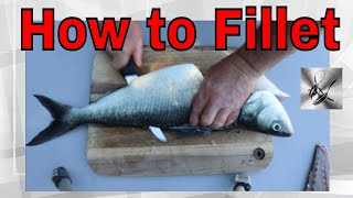How to Fillet a Salmon | Fishing & Cooking | The Hook and The Cook