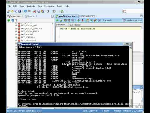 Oracle SQL_TRACE - Beginner