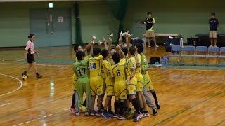 20160918 静岡県高校ハンドボール選手権決勝 清水東高校vs静岡西高校
