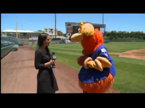 Orbit wins the top mascot in minor league baseball